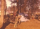 Manfred 1975