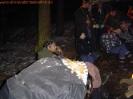 Ernie aus den Niederlanden 2005